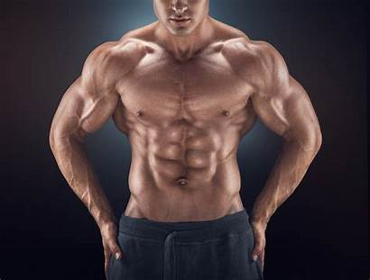 Abs Six Pack Handsome Impossible Upright Row