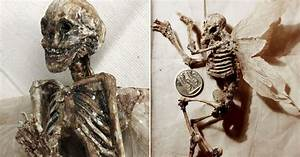 Mystery of winged tiny 'human skeletons' found in