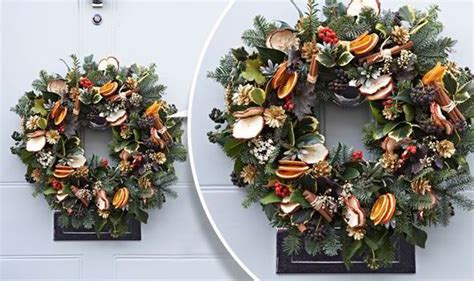 garden plants  create christmas decorations