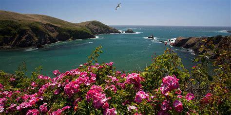 mendocino coast botanical gardens enjoy gardens and bird at mendocino coast