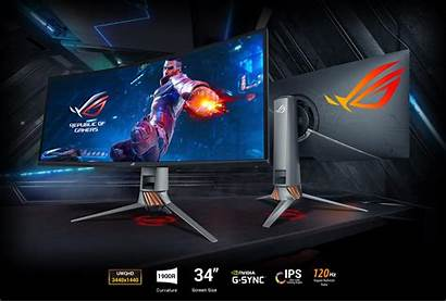 Asus Rog Monitor Gaming Wide Ultra Latest