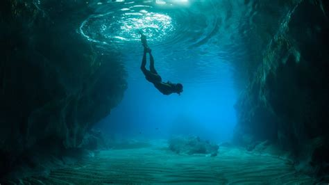 download scuba diving wallpaper gallery
