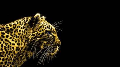 Background Leopard Animals Desktop Fractalius Wallpapers Animal