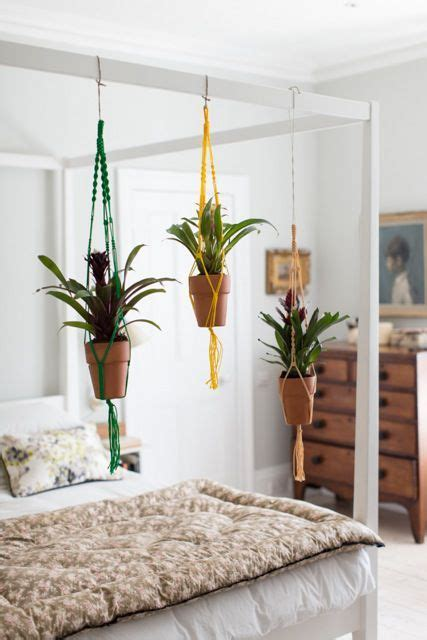 ham high hanging plants  bed build frame
