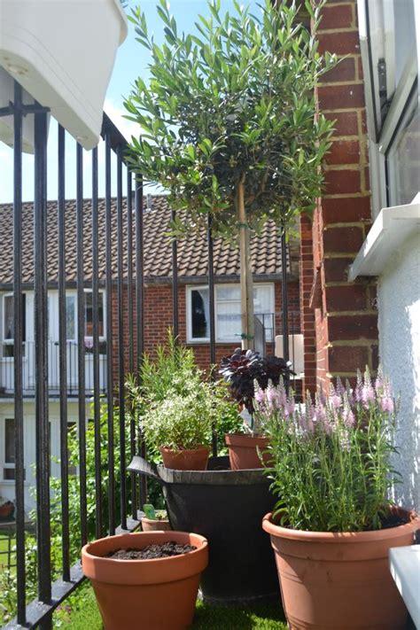 terrassengestaltung mit pflanzen terrassengestaltung mit pflanzen wertvolle ratschl 228 ge und beispiele