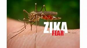 """It's Not the Zika Virus"" — Doctors Expose Monsanto Linked ..."