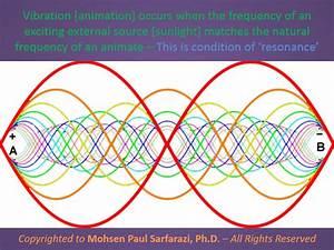 January | 2015 | Multidimensional Consciousness