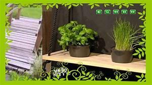 Wie Gestalte Ich Meinen Garten Richtig : wie gestalte ich meinen garten youtube ~ Markanthonyermac.com Haus und Dekorationen