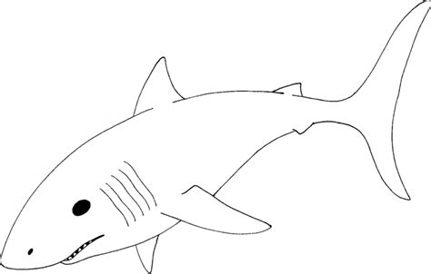 mako template sheet the bull shark coloring pages