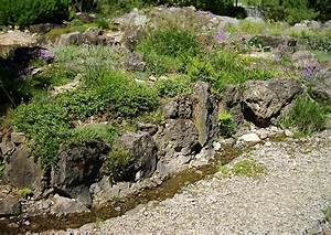 Steingarten Bilder Beispiele : wasser im steingarten bachlauf quelle kleine kaskaden usw ~ Whattoseeinmadrid.com Haus und Dekorationen