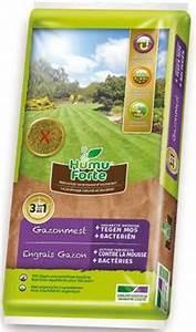 Anti Mousse Gazon Liquide : engrais et anti mousses pour pelouse central jardin ~ Melissatoandfro.com Idées de Décoration