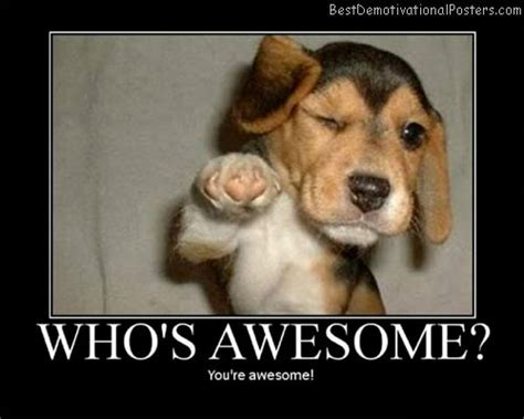 Who's Awesome  Motivational Poster