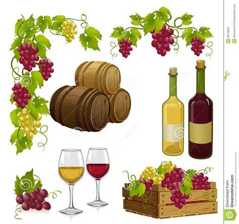 chambrer un vin fije para la vinificación ilustración vector imagen