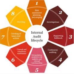 Internal Audit Life Cycle