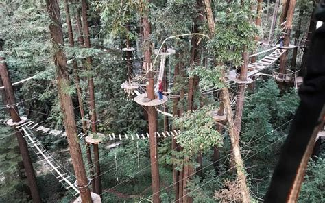 redwood canopy tours mount hermon canopy tours archives go hike it
