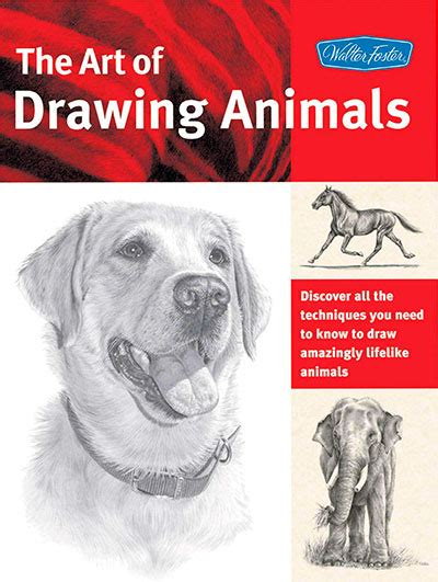 art  drawing animals discover   techniques