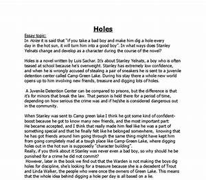 holes book theme