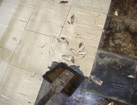 identify remove asbestos  linoleum flooring