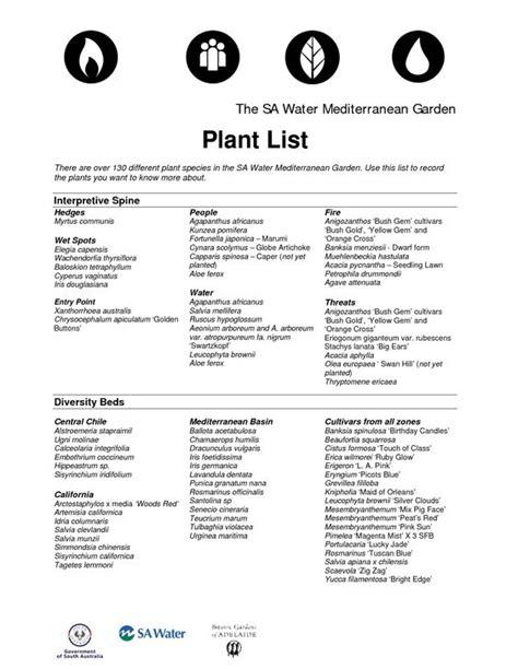 mediterranean plants list pinterest the world s catalog of ideas