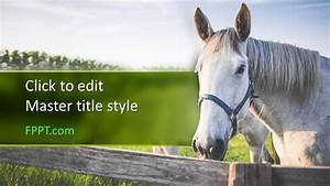 Free Horse Powerpoint Template