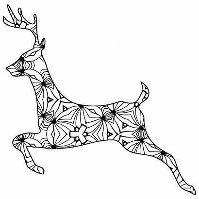 Coloring Geometric Animal Pages Deer Printable Outline