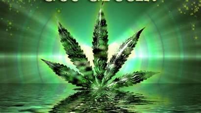 Weed Leaf Wallpapers Pot Backgrounds Desktop Marijuana