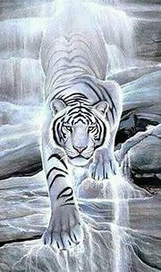 #whitetiger #endangeredspecies | Tiger wallpaper, Big cats ...