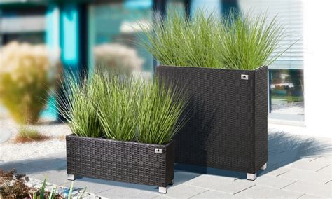 Gartenfreude Pflanzenraumteiler  Groupon Goods