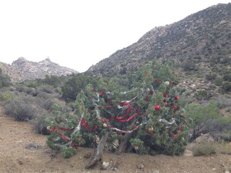 laughlin picture of christmas tree pass laughlin