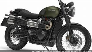 New Triumph Scrambler 2017 Pictures to Pin on Pinterest ...