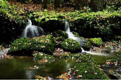 Clipart Waterfall Riparian Forest Zone Transparent Creek