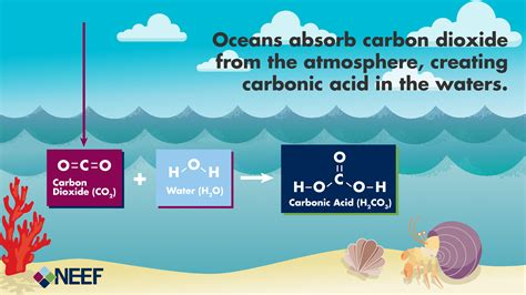 understanding the science of and coastal