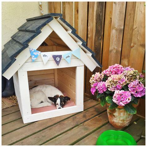 Haus Für Hunde