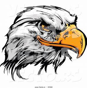 Cartoon Eagles Logos Clipart - Clipart Suggest