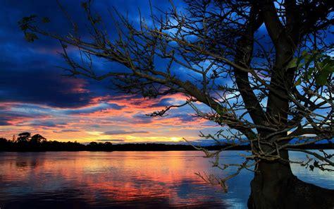 sunset trees lake wallpapers hd desktop  mobile