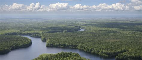 boreal program advocate  nature  ontario nature