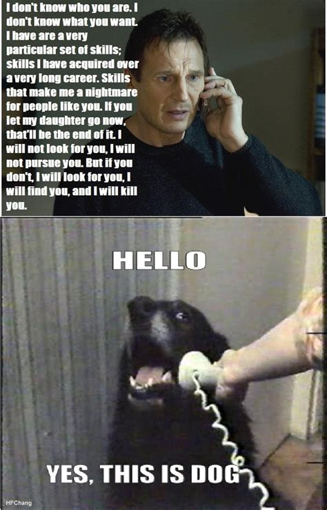 This Is Dog Meme - yes this is dog lol pinterest