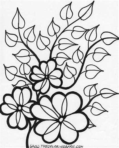 Flower Coloring Single Pages Printable Getcolorings
