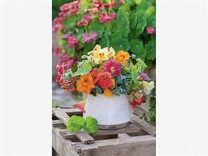 Blumen Bewässern Mit Wollfaden : blumenstrau selber binden mein sch ner garten ~ Lizthompson.info Haus und Dekorationen