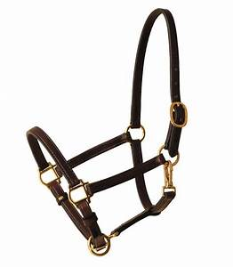 Tory Cob Size Leather Halter