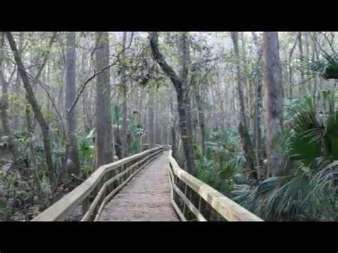 Highland Hammocks by Highlands Hammock State Park Sebring Florida Usa