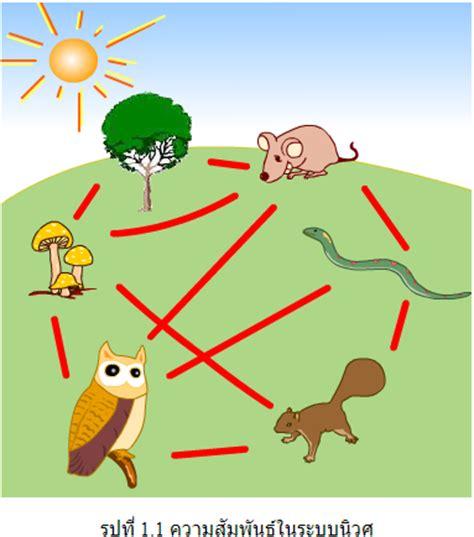 ระบบนิเวศ   Ecology ระบบนิเวศน่ารู้