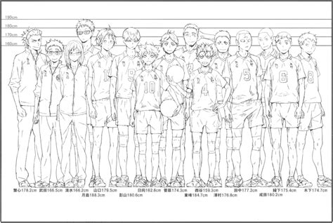 Have you always wondered what haikyuu character are you? Official height chart/comparison of the entire Karasuno team from the anime guide book ...