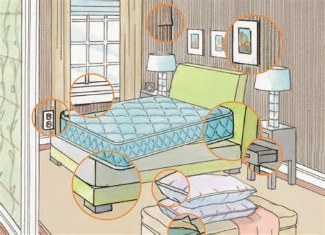 come vengono le cimici da letto cimici da letto come debellarle
