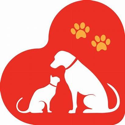 Humane Society Santa Maria Valley Petfinder Adoption