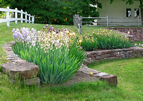 i this iris garden idea and we the