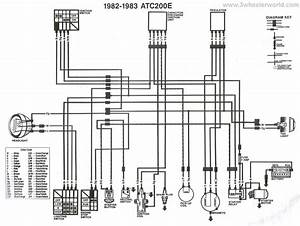 1992 Honda Fourtrax 300 Wiring Diagram