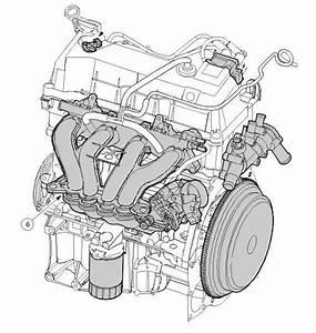 Fiesta Duratec Engine Diagram Di 2020  Dengan Gambar