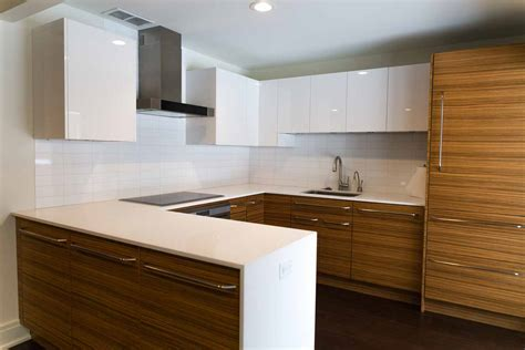 Zebrawood Kitchen Remodel in Rochester, NY   Concept II