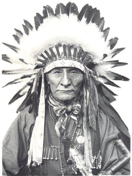 Indian Chief Image by American Indian Day A Tribute To American